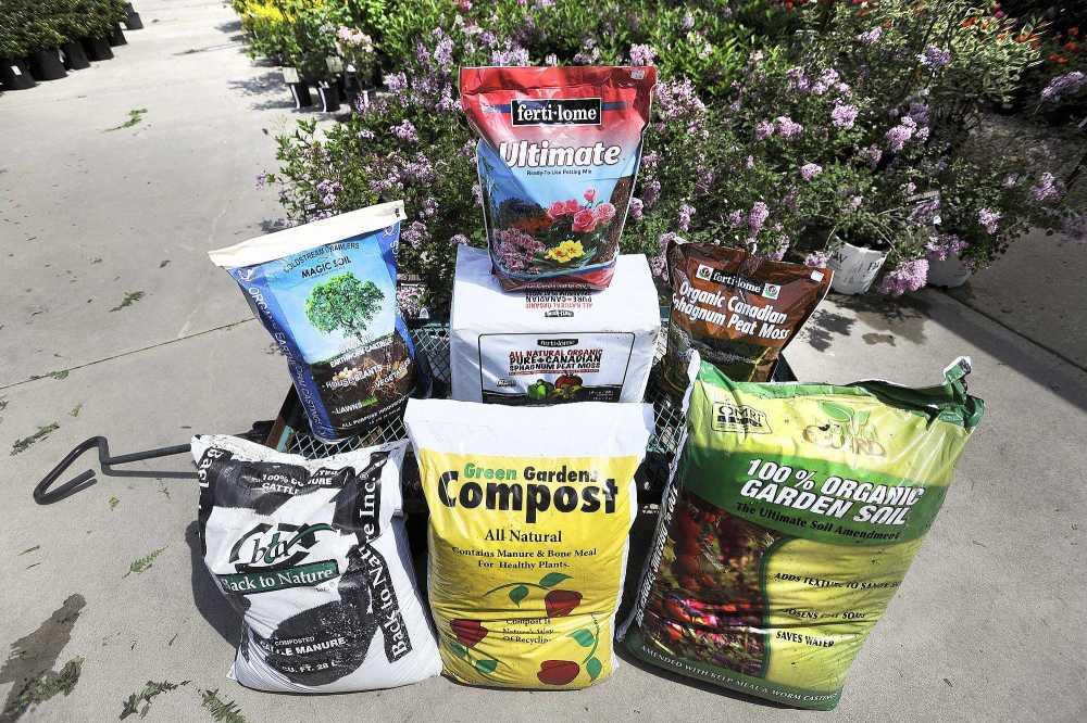 Tips For Starting A Backyard Garden